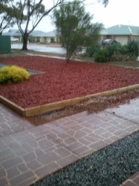 The Wet Driveway and front garden