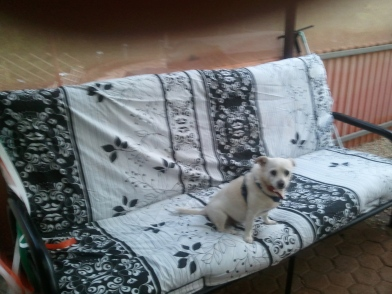 Chienna on her Futon.