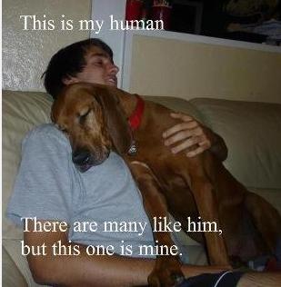 My Human