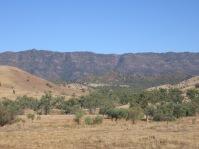Wilpena in the Flinders Ranges