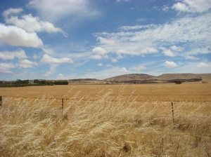 The Lower Flinders Ranges from Highway 1