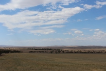 The view from the roadway - Outside Port Wakefield.