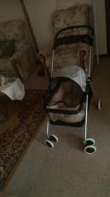 The Dog Stroller