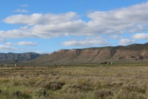 The lower Flinders Ranges.