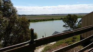 Tailem Bridge and a healthy looking River Murray