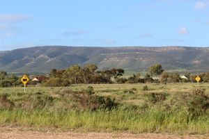 The Lower Flinders from, Port Wakefield Road