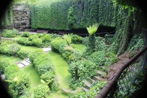 The Sinkhole Gardens